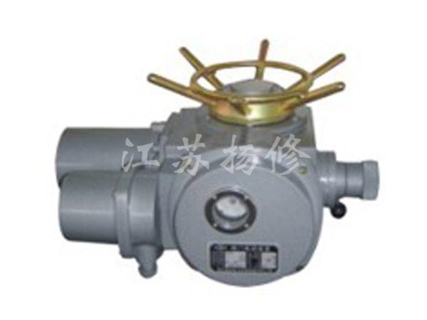 DZW30-DS1系列扬州电动装置
